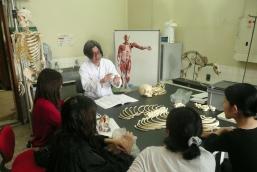 anatomy_img200901